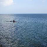 Viking roer på Øresund