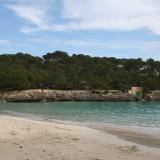 Havet er fantastisk, selv ved 15 grader    Foto: Charli