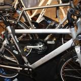 Koga cykler en masse     Foto: Charli