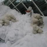 Snelandskab i München lufthavn    Foto: Charli