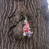 Plastik-kunst i skoven