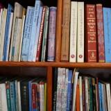 De sparsomme bøger i skolestuen    Photo: Charli