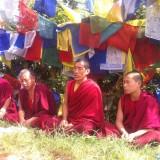 Aldrig har jeg set så mange flag som på toppen af Guru Rinpoches bjerg    Photo: Charli