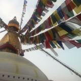 Den største stupa i Nepal    Photo: Charli
