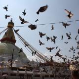 Stupaen   Photo: Charli