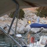 En italiensk båd besætning gør klar til bål på bredden    Photo: Charline Skovgaard